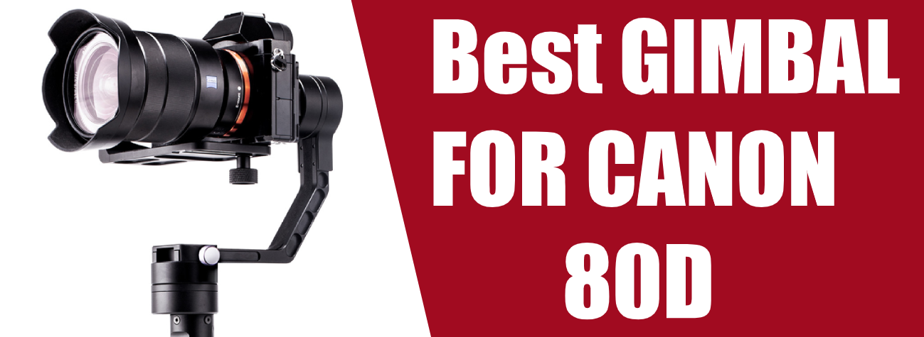 Best Gimbal For Canon 80D